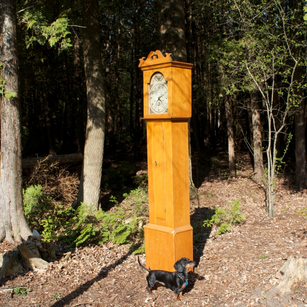 clock in woods emmitt