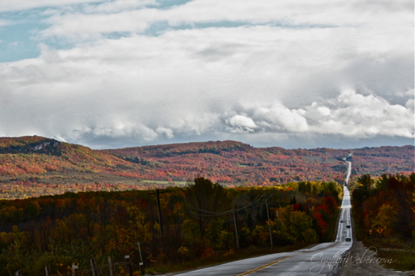 winding road in the beaver valley of ontario in the fall