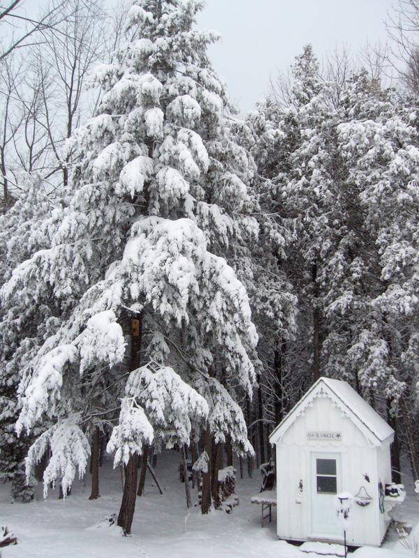 snow at Hoop Yop House 3