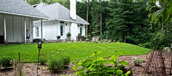 backyard before adding antique windows cynthiaweber.com