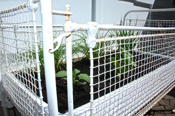Antique crib turned Herb Garden  2