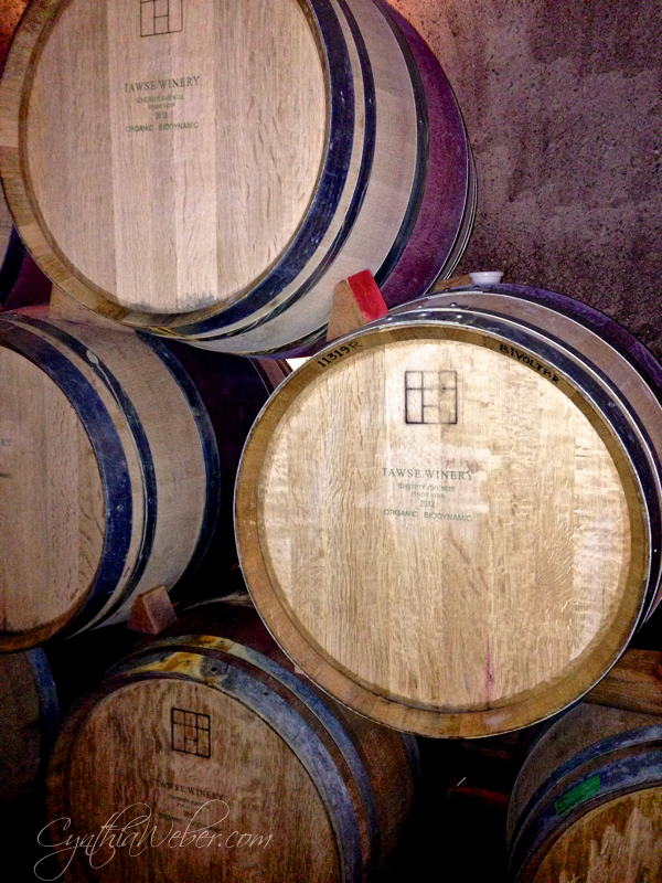 Tawse Winery Tour CynthiaWeber.com