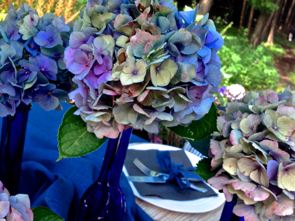 Faded and Fabulous Hydrangea blooms for a Fall Garden Party CynthiaWeber.com