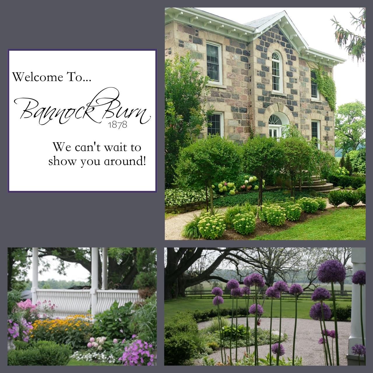 Welcome to BannockBurn… CynthiaWeber.com