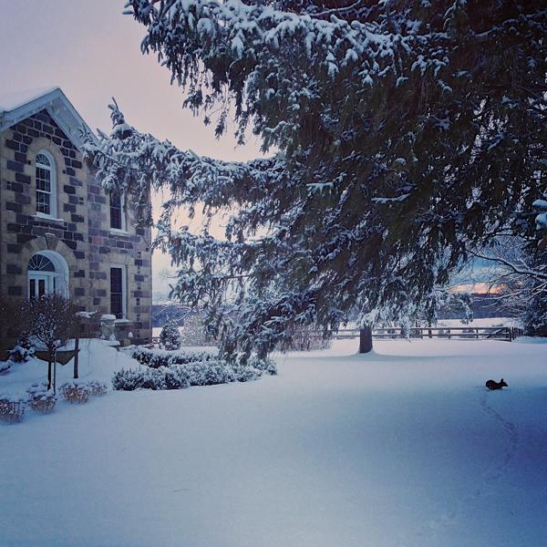 Winter morning at BannockBurn 1878… CynthiaWeber.com