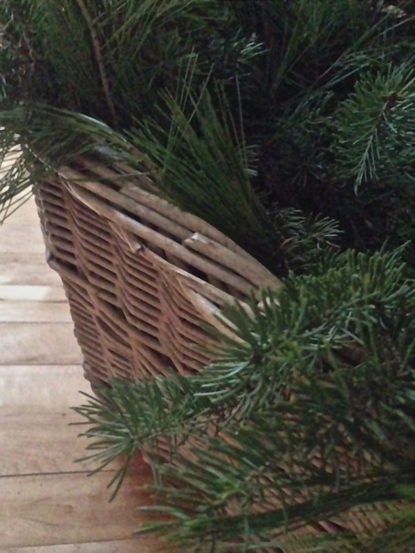 Simple greens in antique baskets for Holiday decorating… Cynthiaweber.com