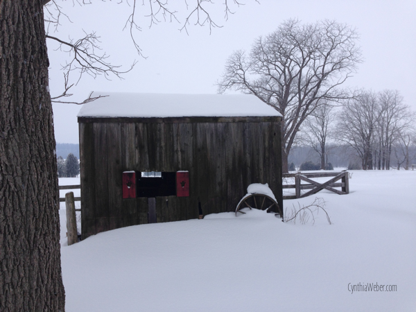 The little shed… CynthiaWeber.com
