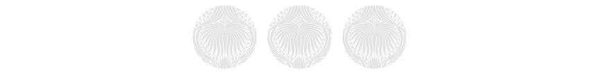 Circle Graphic Header