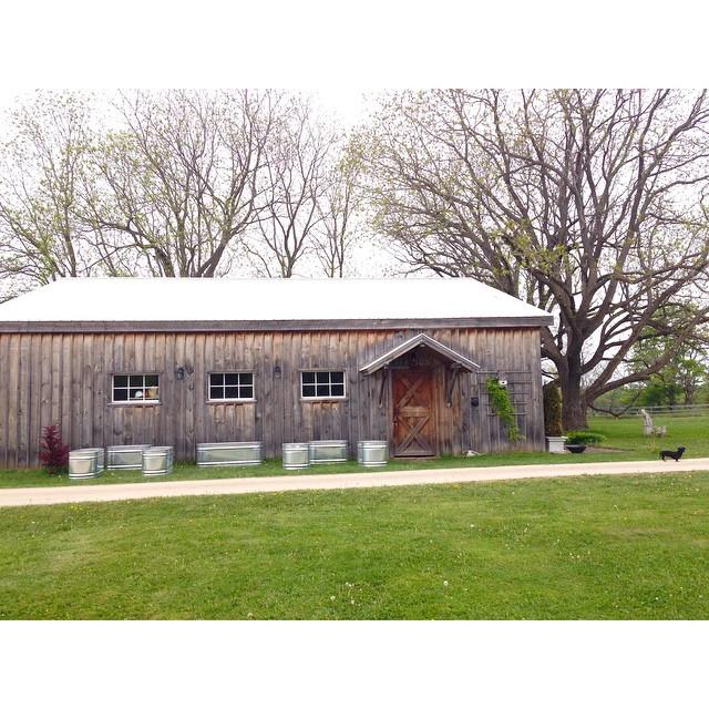 Future raised herb garden at the side of the barn at BannockBurn 1878… CynthiaWeber.com