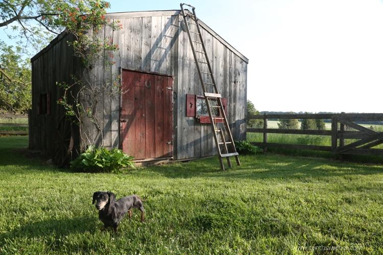 Emmitt at the little barn BannockBurn 1878...