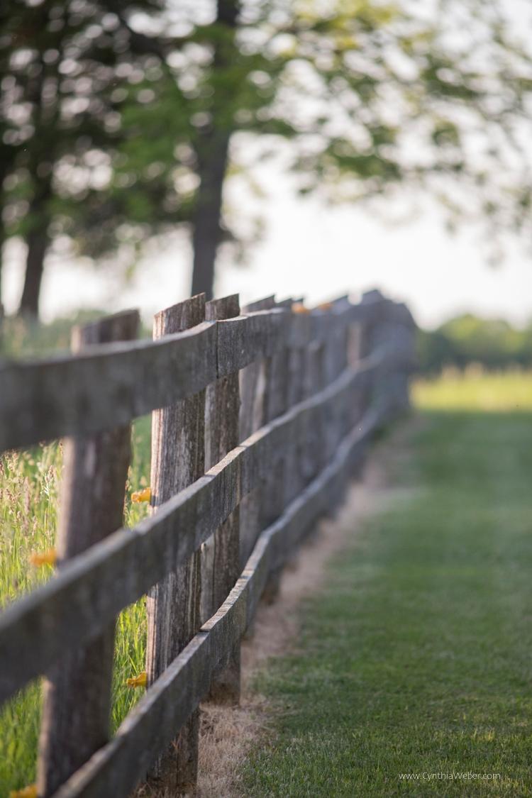 The pasture fence… BannockBurn 1878...
