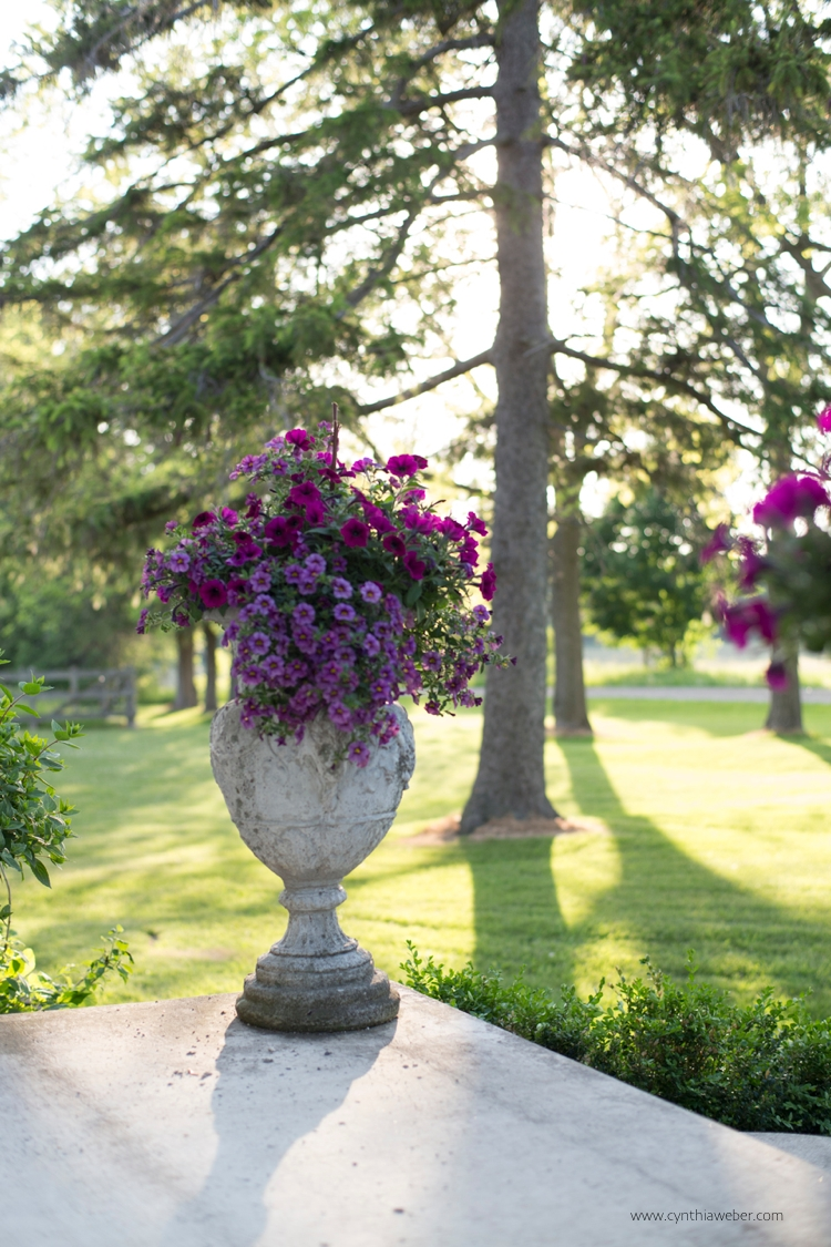 Urns infront of the house… cynthiaweber.com