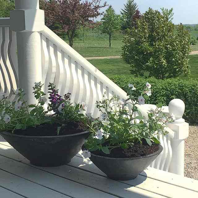 Adding annuals to the porch styling...